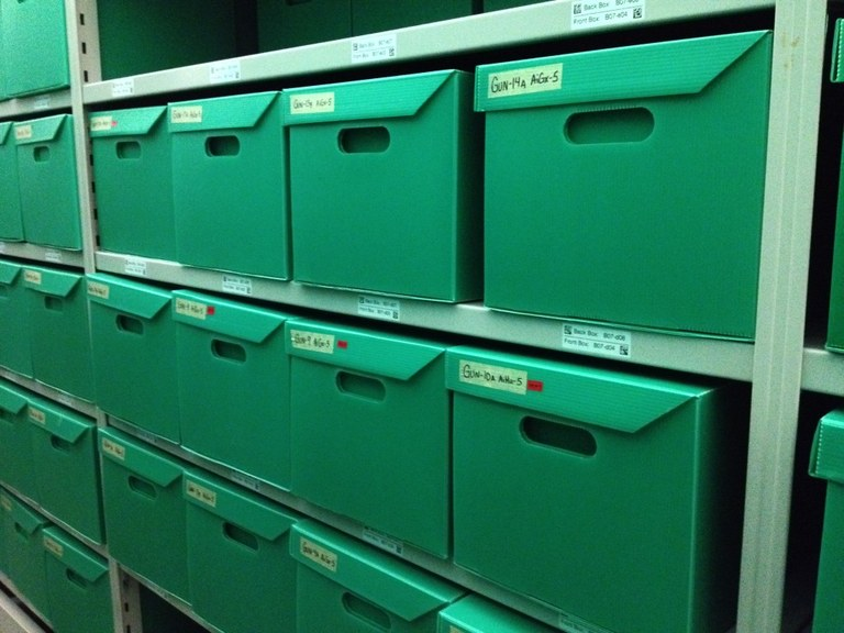 Some of the 27 boxes of material from the Gunby Site
